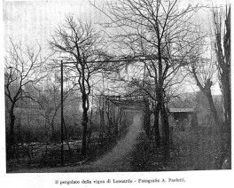 Luca Beltrami shots of Leonardo Da Vinci's vineyard, taken in 1919